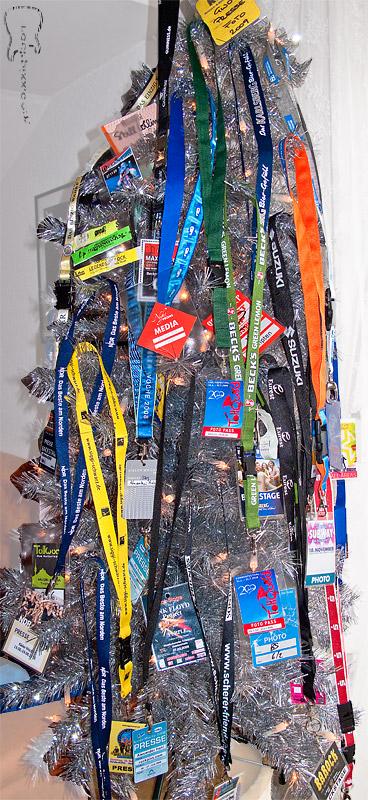 Fotopässe am Weihnachtsbaum